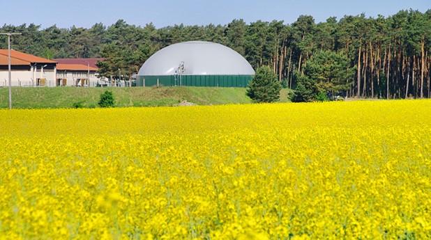 1893690-biogasanlage-rapsfeld-biogas-plant-rape-field-03