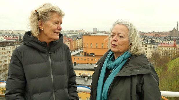 Författarna till boken Tidstypiskt, Cecilia Björk och Laila Reppen, vill öka kunskapen och förståelsen kring olika arkitektoniska epoker i vår bebyggelse.